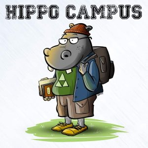 Hippo Campus   © Scott Johnson