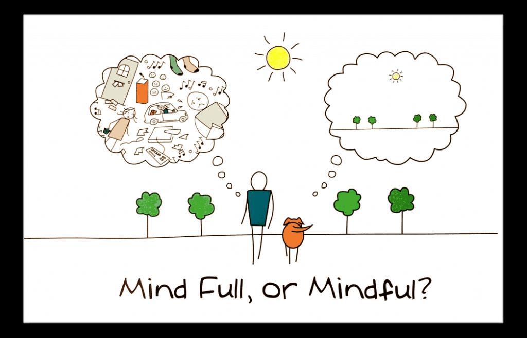 mindfull vs mindful