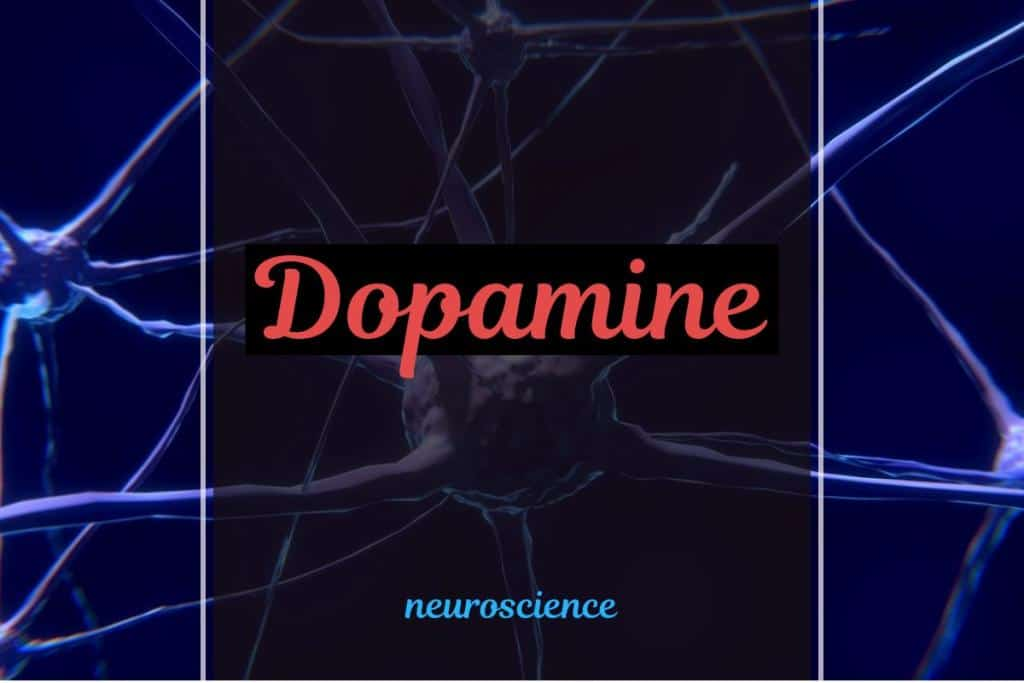 dopamine productivity