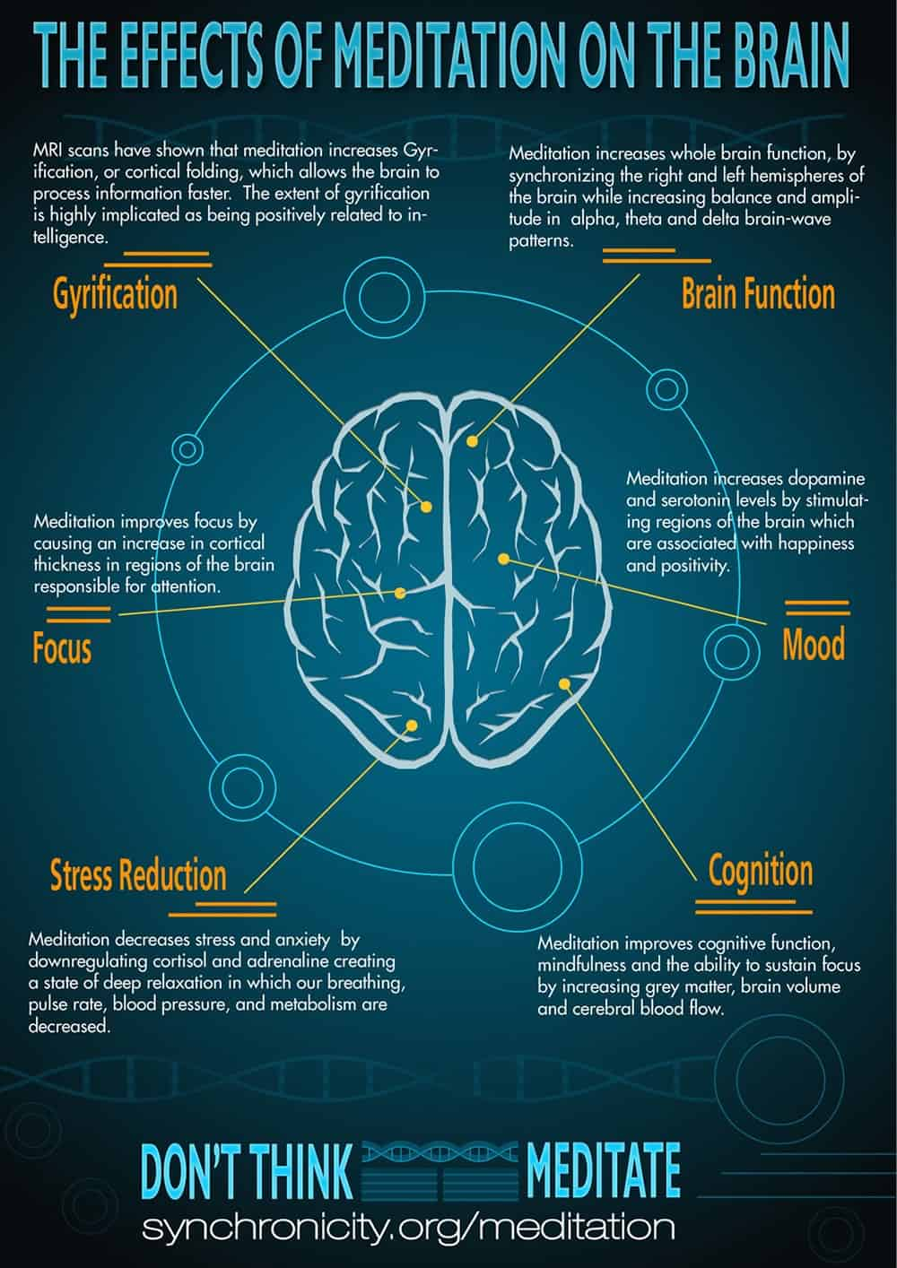 Infograph: Effects of Meditation on the Brain
